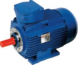 Acp D Limited Rotor Atex Motors