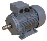 Index - Dutchi DMA2 series motor
