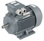 Index - Marathon HJA series motor