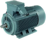 Index - Marathon HJN series motor