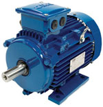 Index - Marathon MLA series motor
